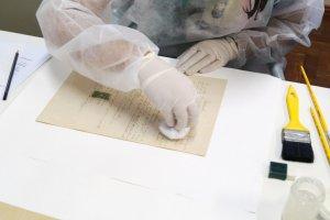 Desinfecção / Higienização de Documentos e Fotos