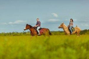 Acompanhante de Turismo Equestre