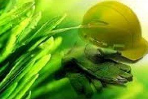 Auditorias Internas e Sistemas de Gestão Ambiental - NP EN ISO 14001:2012