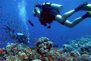 Conceitos Teóricos sobre Mergulho