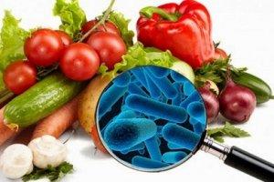 Introdução à Microbiologia Alimentar