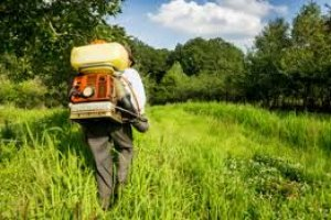 Controle de Pragas e Agrotóxicos