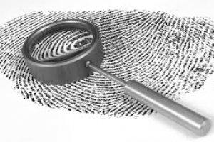 Curso de Formação em Criminologia - E-learning