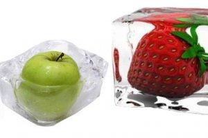 Congelamento de comida fitness